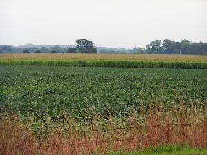 La Tecnología Agrícola